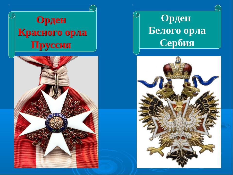 Орден Красного орла Пруссия Орден Белого орла Сербия