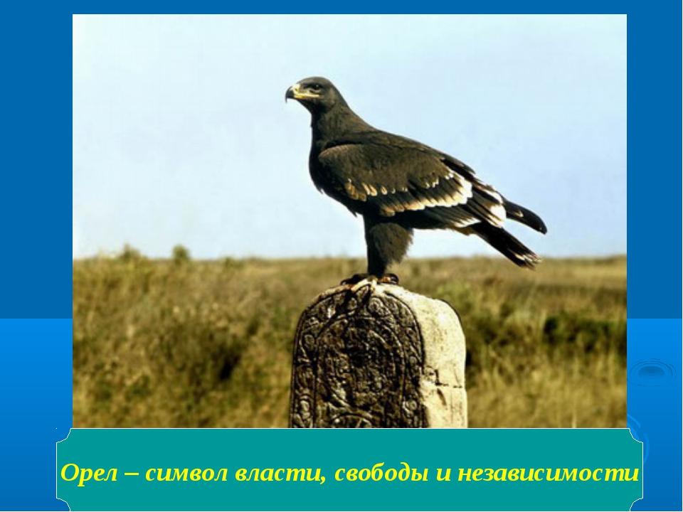 Орел – символ власти, свободы и независимости