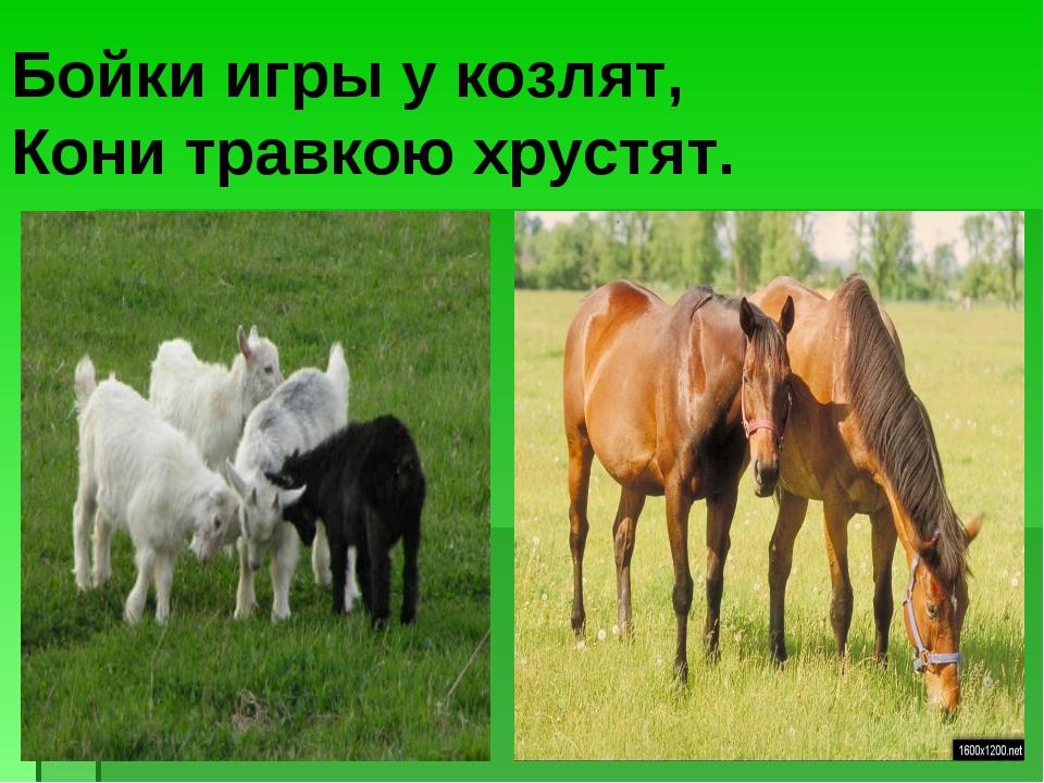 Бойки игры у козлят, Кони травкою хрустят.