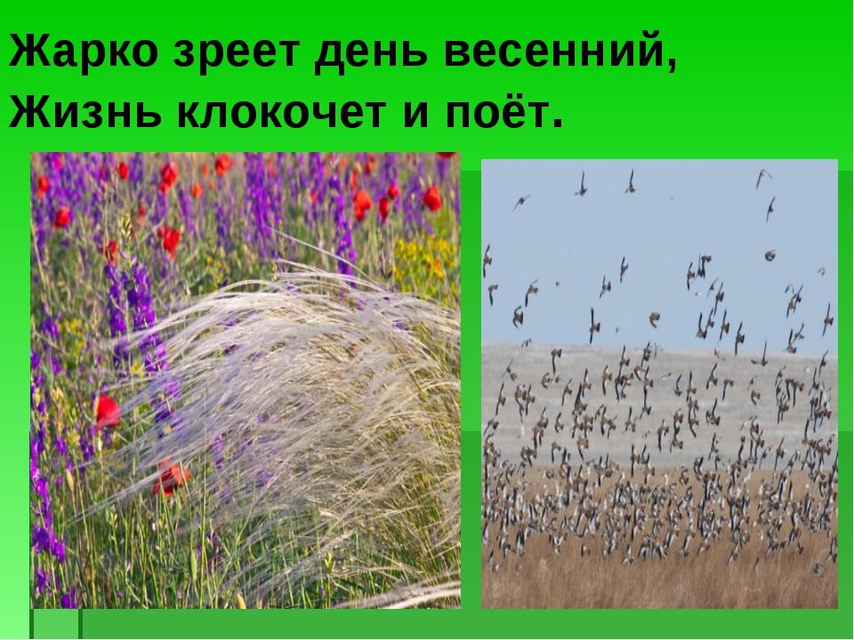Жарко зреет день весенний, Жизнь клокочет и поёт.