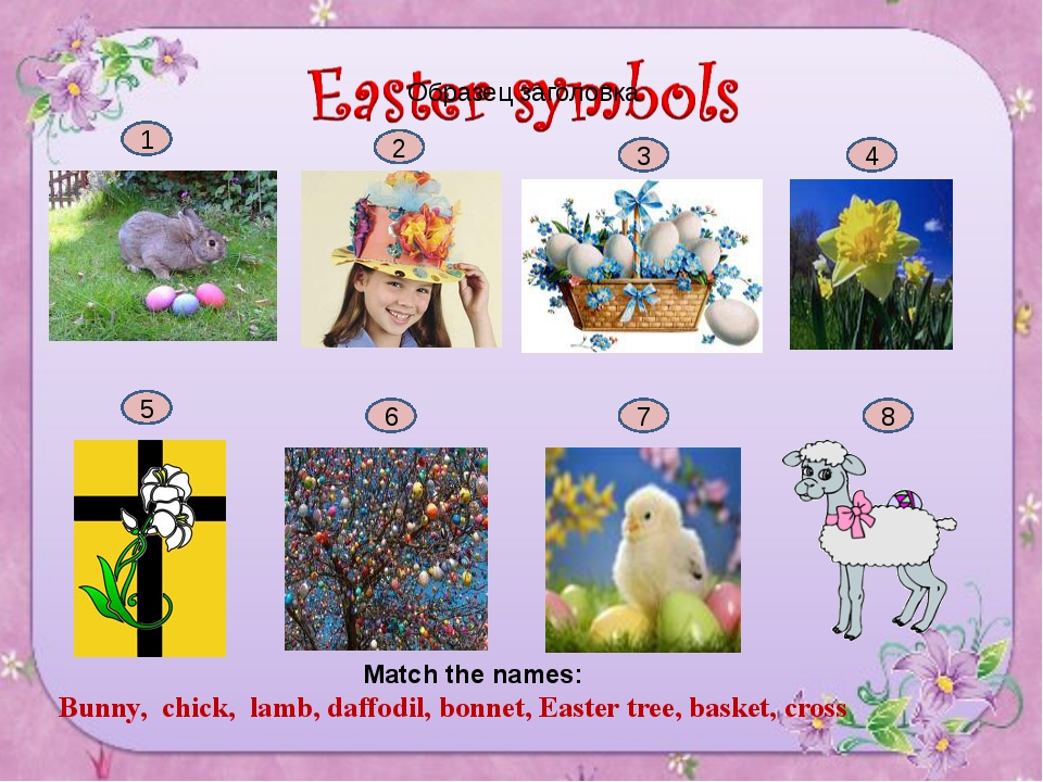 1 2 3 4 5 6 7 8 Match the names: Bunny, chick, lamb, daffodil, bonnet, Easter...