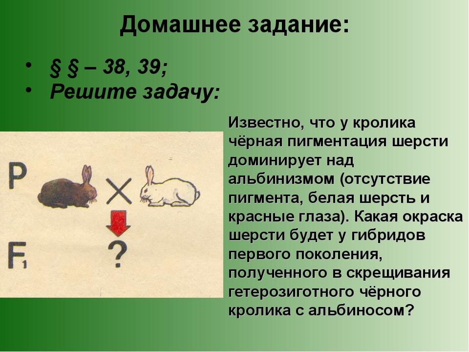 Домашнее задание: § § – 38, 39; Решите задачу: Известно, что у кролика чёрная...