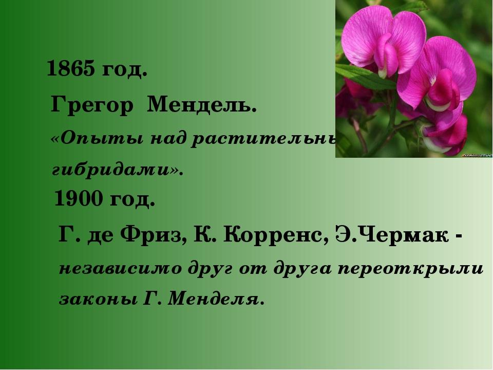1865 год. Грегор Мендель. «Опыты над растительными гибридами». 1900 год. Г....