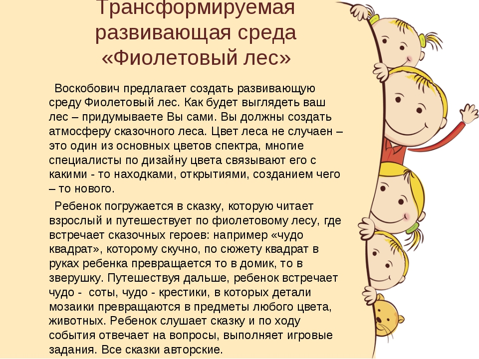 Трансформируемая развивающая среда «Фиолетовый лес» Воскобович предлагает соз...