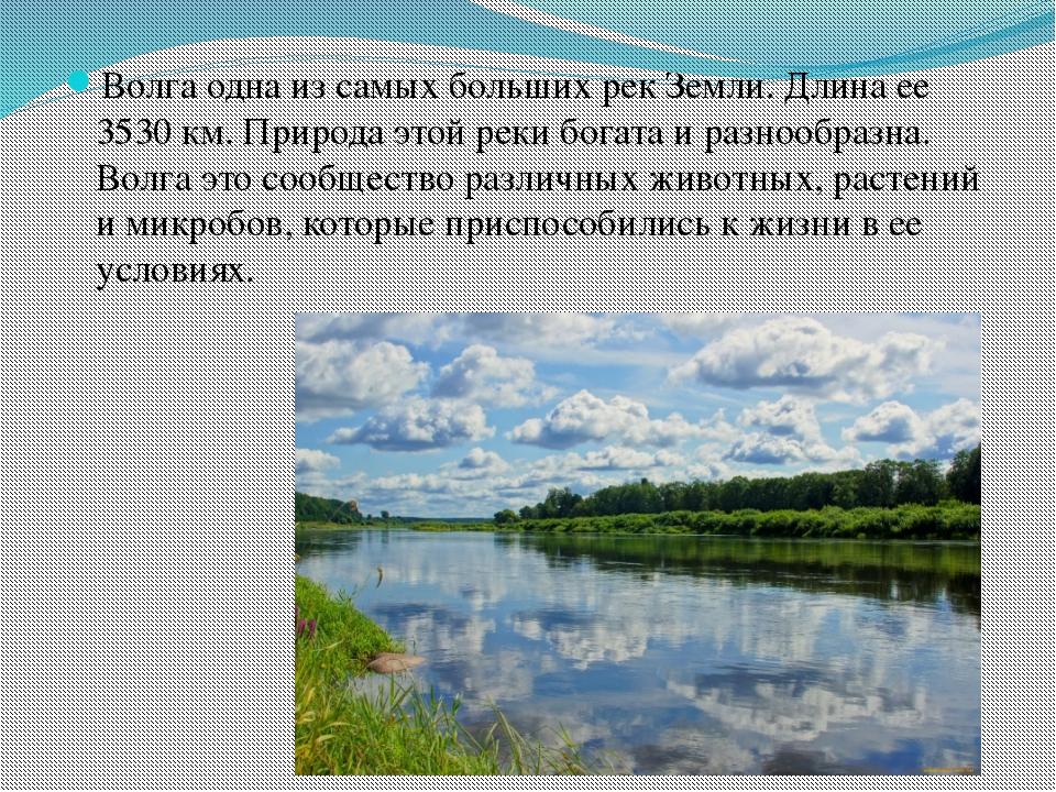 Волга одна из самых больших рек Земли. Длина ее 3530 км. Природа этой реки бо...