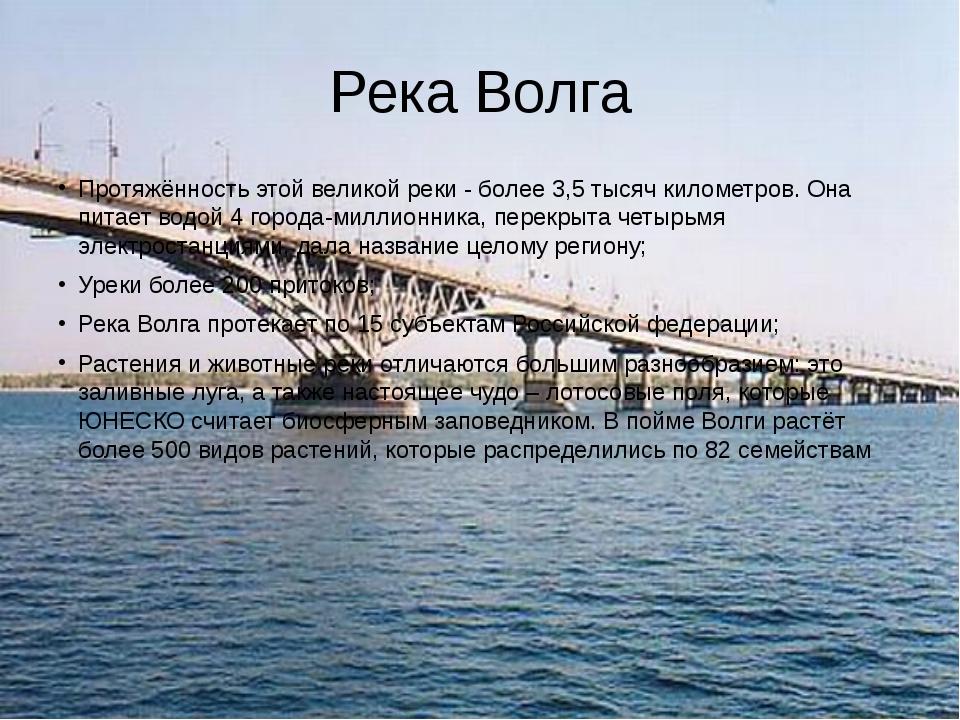 Река Волга Протяжённость этой великой реки - более 3,5 тысяч километров. Она...