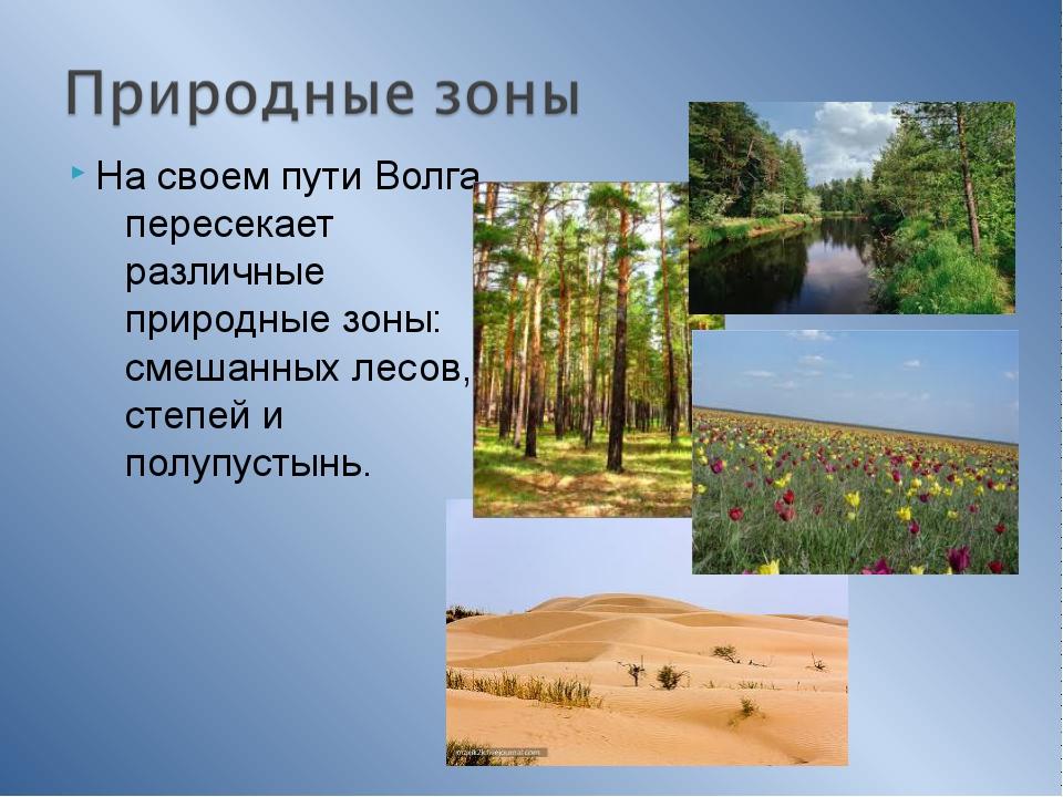 На своем пути Волга пересекает различные природные зоны: смешанных лесов, сте...