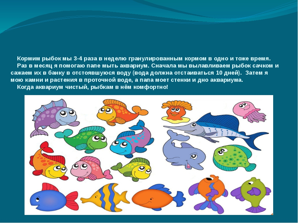 Кормим рыбок мы 3-4 раза в неделю гранулированным кормом в одно и тоже время...
