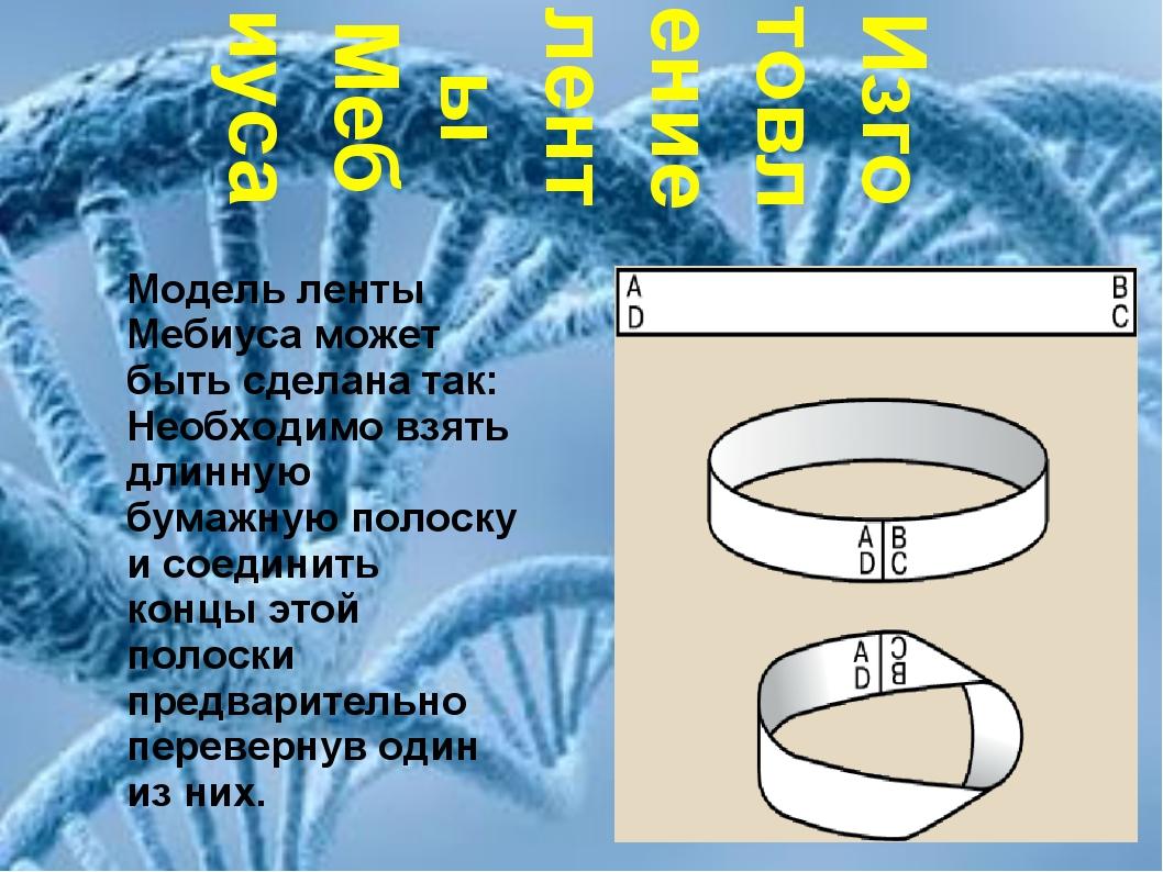 Изготовление ленты Мебиуса Изготовление ленты Мебиуса Модель ленты Мебиуса мо...