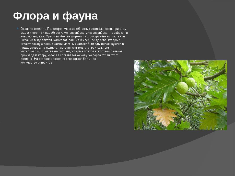 Флора и фауна Океания входит вПалеотропическую областьрастительности, при э...