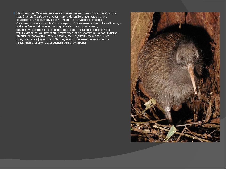 Животный мир Океании относится к Полинезийской фаунистической области с подоб...