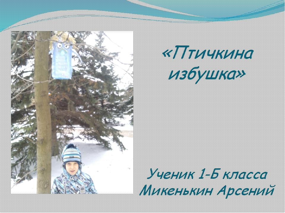 «Птичкина избушка» Ученик 1-Б класса Микенькин Арсений