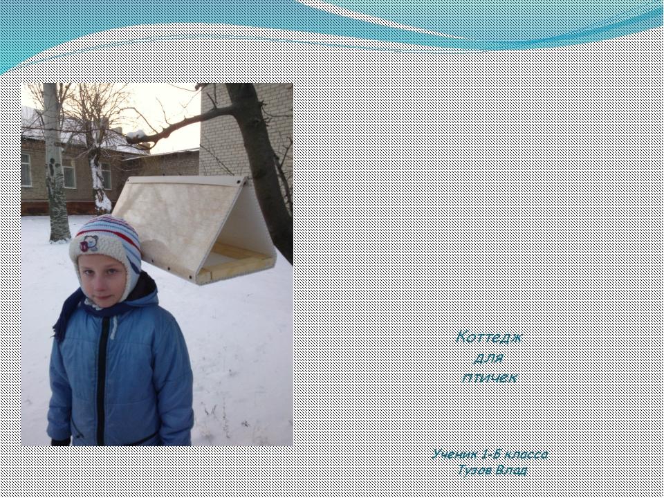 Коттедж для птичек Ученик 1-Б класса Тузов Влад