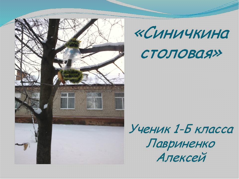 «Синичкина столовая» Ученик 1-Б класса Лавриненко Алексей