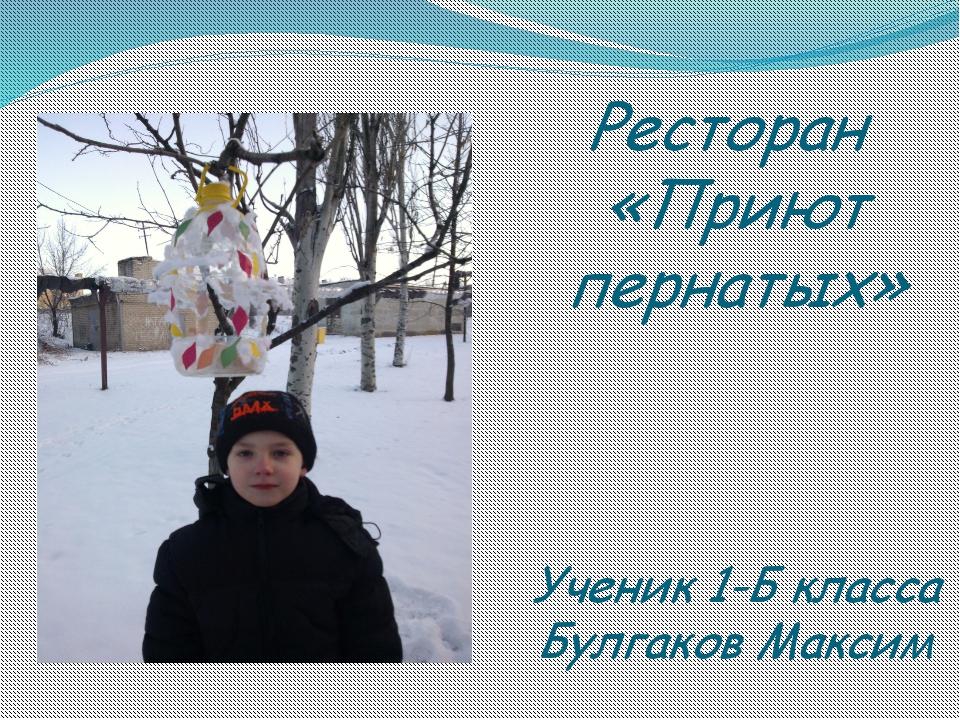 Ресторан «Приют пернатых» Ученик 1-Б класса Булгаков Максим