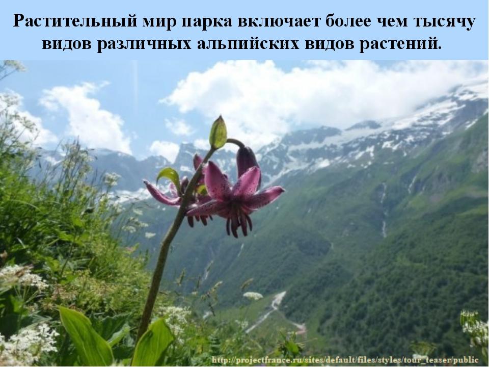 Растительный мир парка включает более чем тысячу видов различных альпийских в...