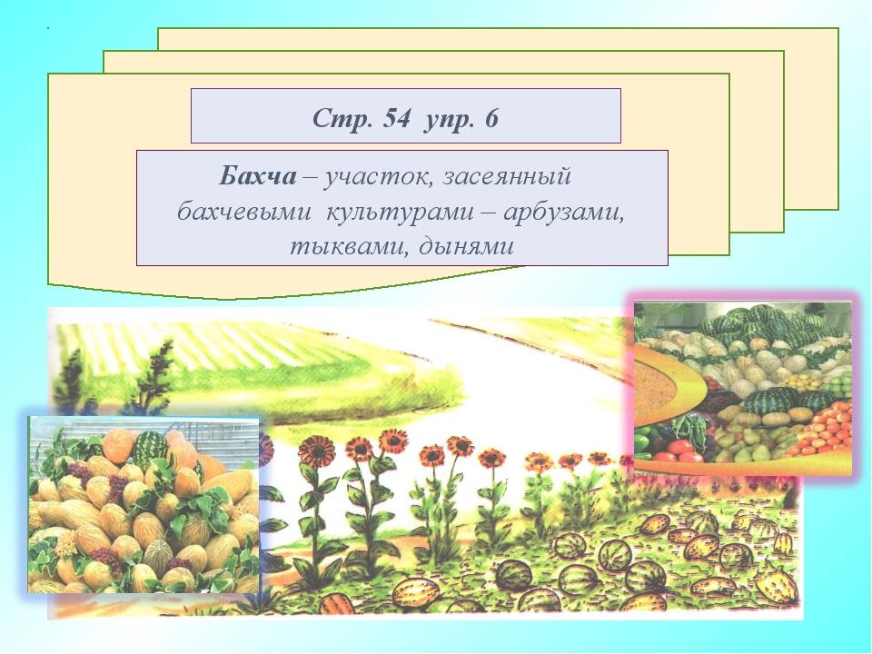 Стр. 54 упр. 6 Бахча – участок, засеянный бахчевыми культурами – арбузами, ты...