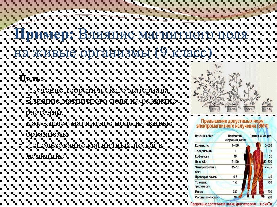 Пример: Влияние магнитного поля на живые организмы (9 класс) Цель: Изучение т...
