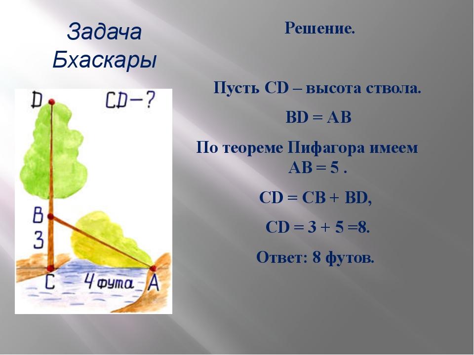 Задача Бхаскары Решение.  Пусть CD – высота ствола. BD = АВ По теореме Пифаг...