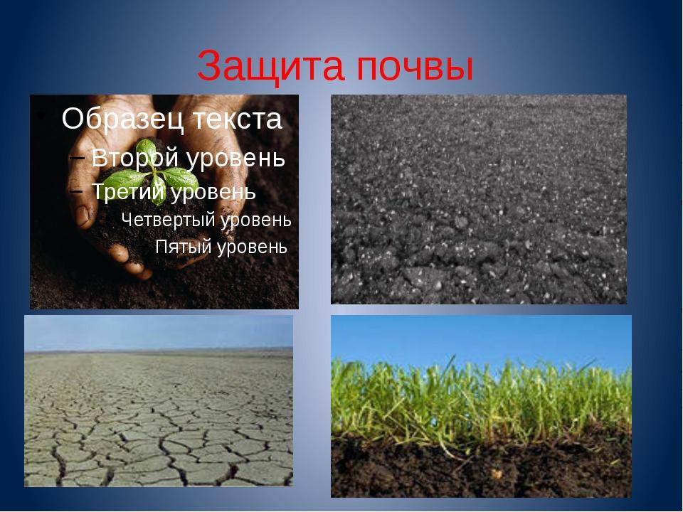 Защита почвы