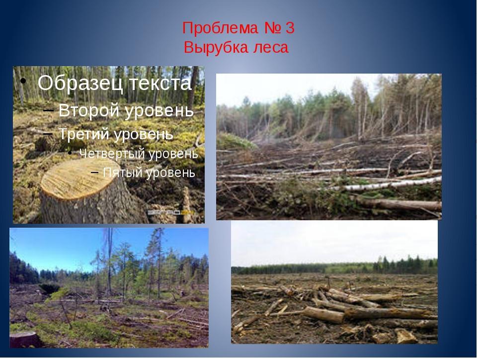 Проблема № 3 Вырубка леса
