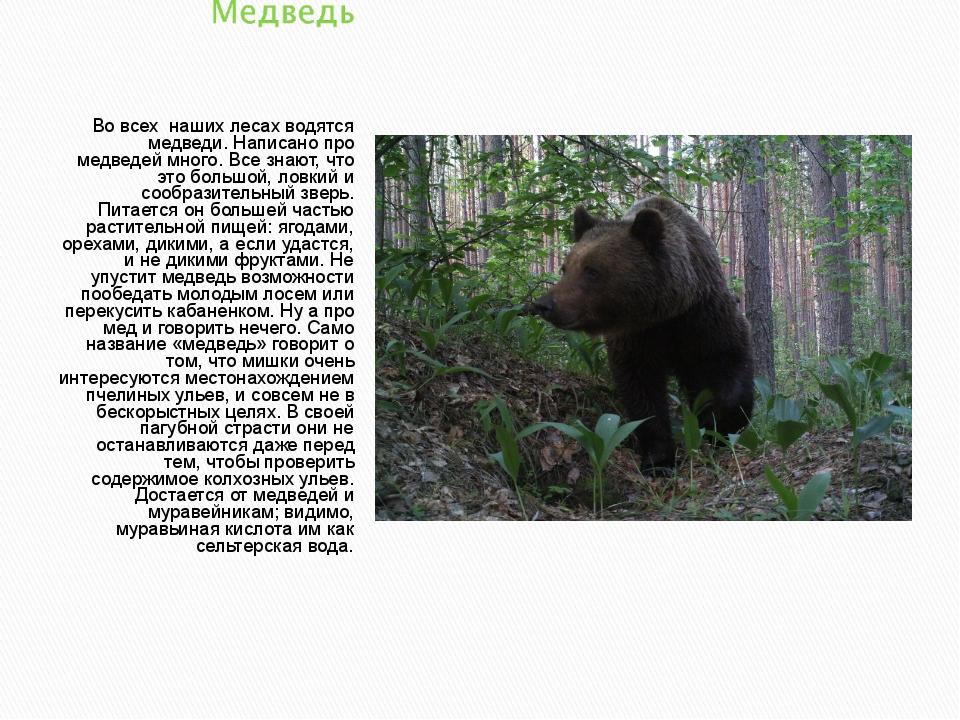 Во всех наших лесах водятся медведи. Написано про медведей много. Все знают,...