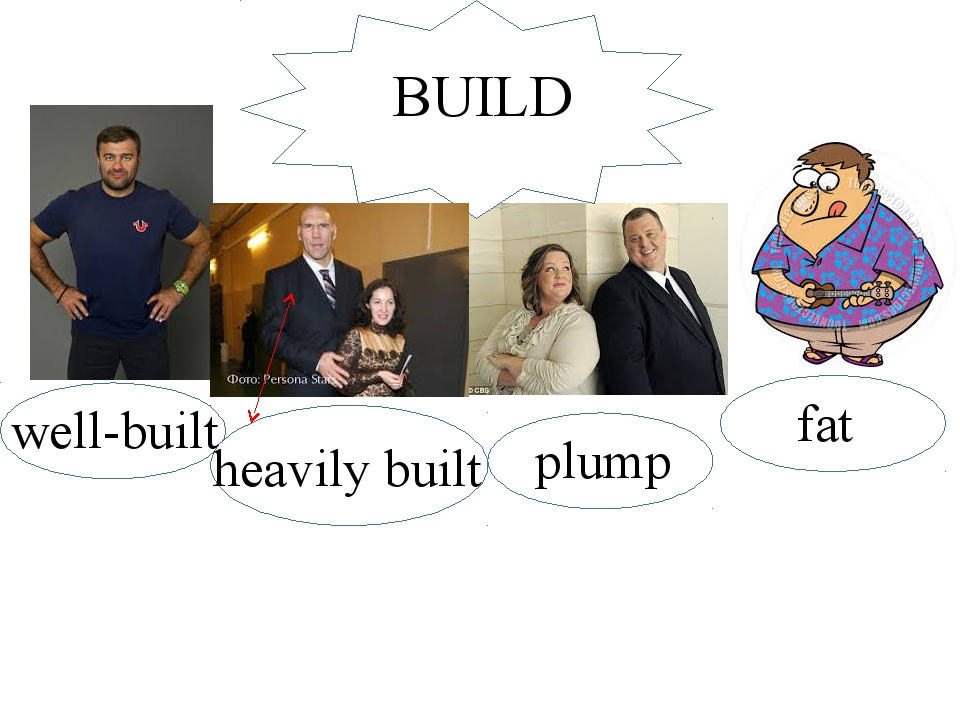 build BUILD well-built plump fat heavily built