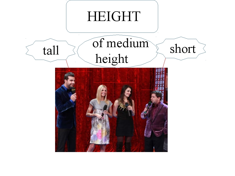 Short short tall of medium height HEIGHT