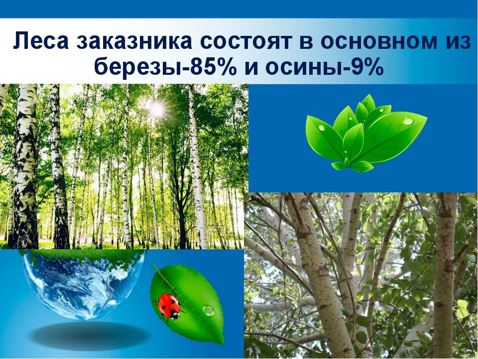 Леса заказника состоят в основном из березы-85% и осины-9%