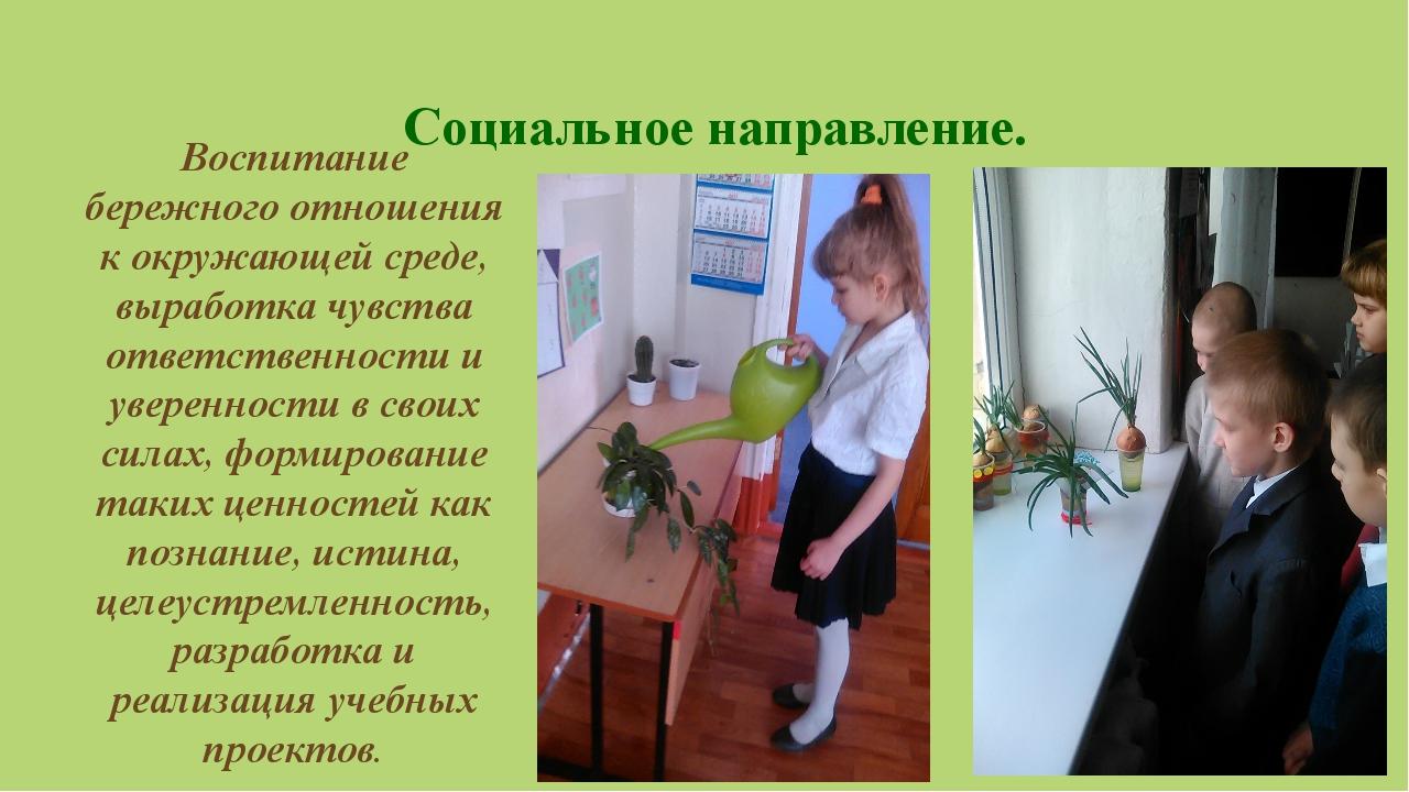 Социальное направление.  Воспитание бережного отношения к окружающей среде,...
