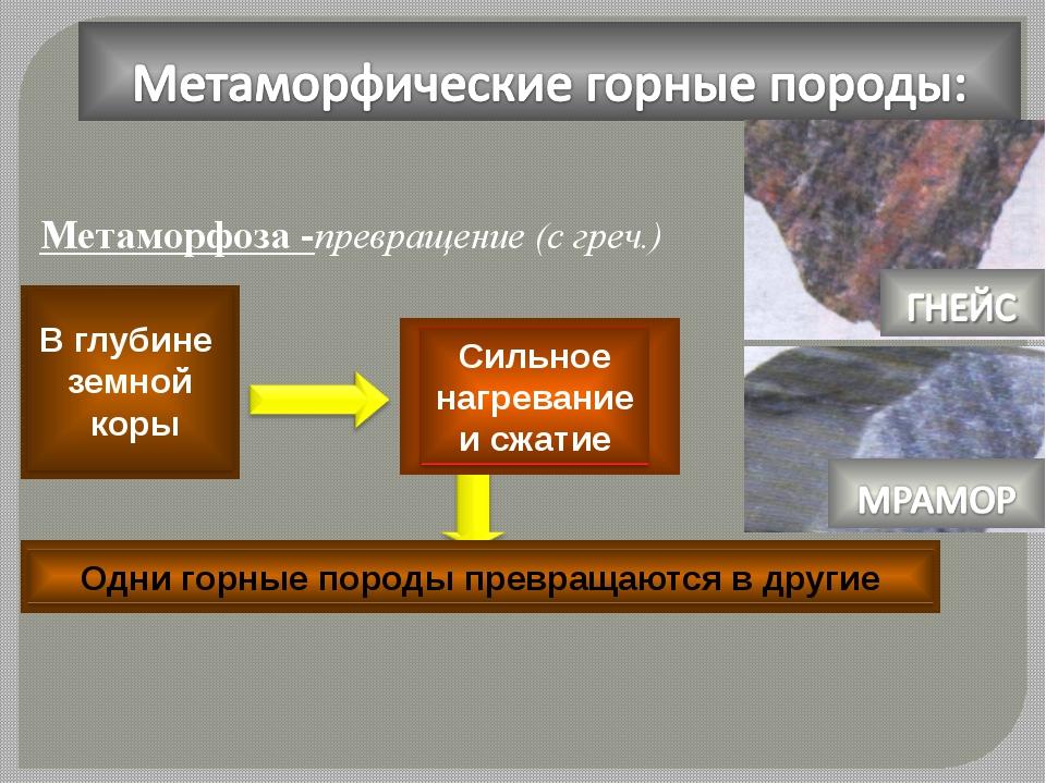 Метаморфоза -превращение (с греч.) Метаморфоза -превращение (с греч.)