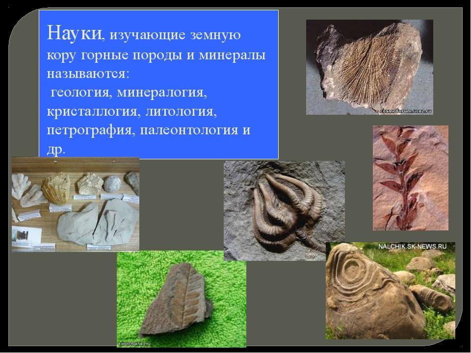 Науки, изучающие земную кору горные породы и минералы называются:  геология,...