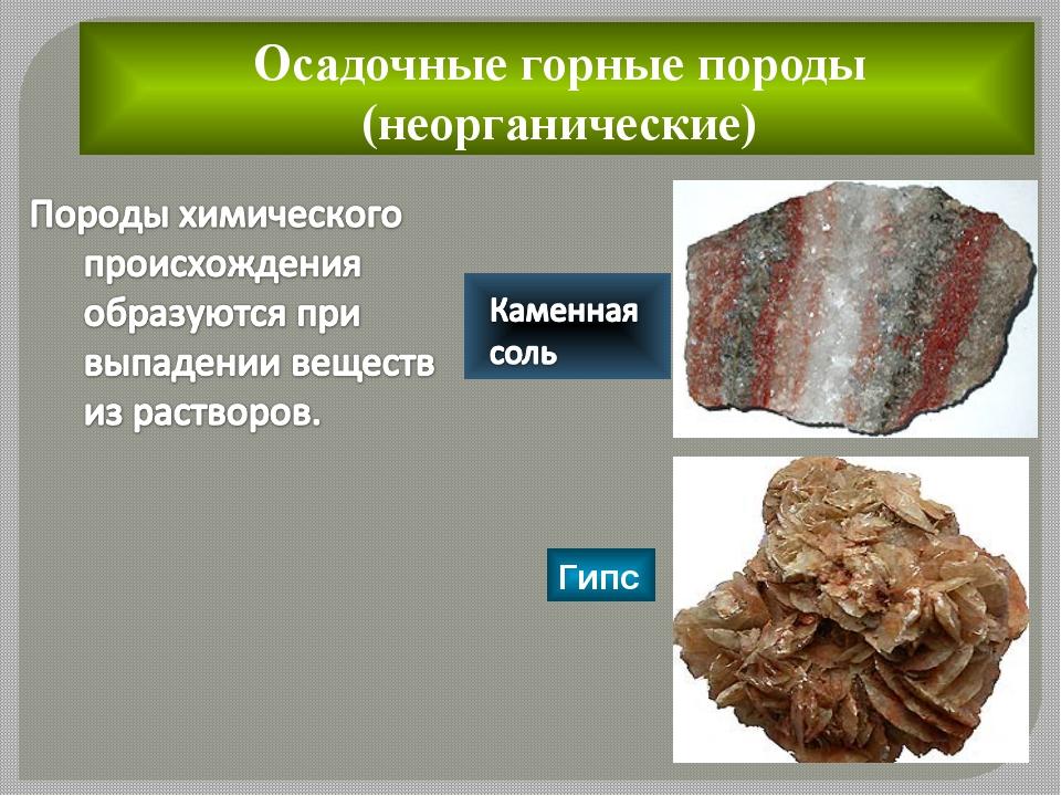 Осадочные горные породы (неорганические)