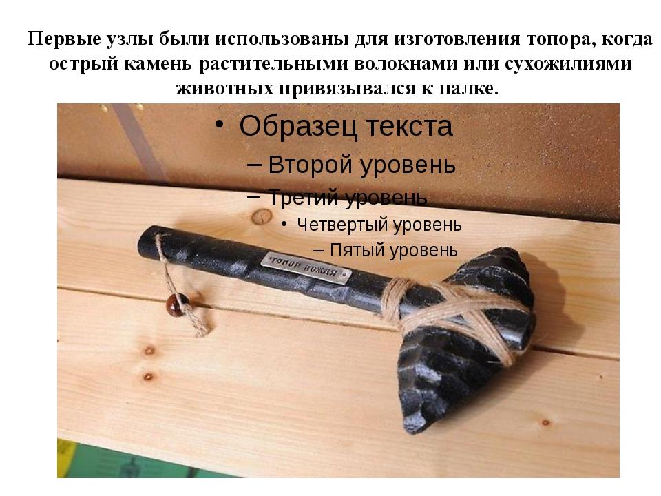 Первые узлы были использованы для изготовления топора, когда острый камень ра...