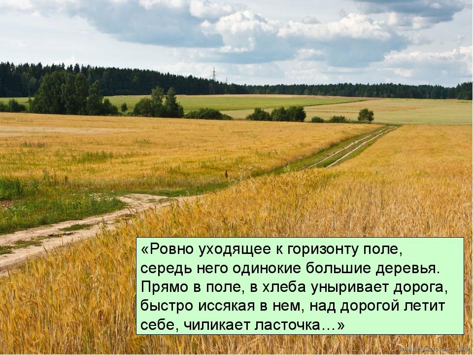 «Ровно уходящее к горизонту поле, середь него одинокие большие деревья. Прямо...
