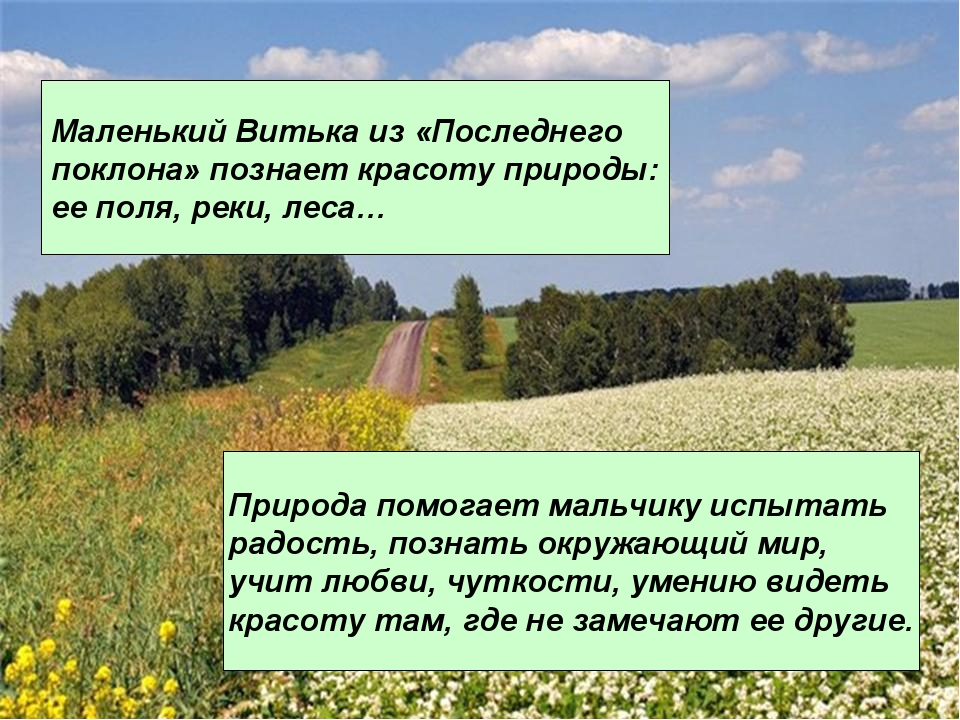 Маленький Витька из «Последнего поклона» познает красоту природы: ее поля, ре...