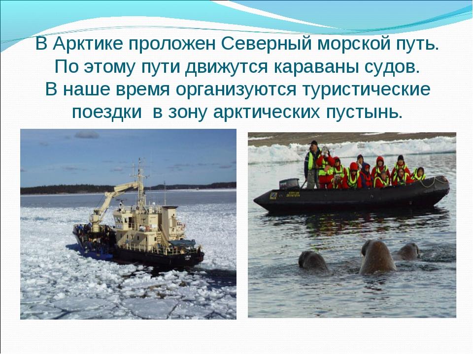 В Арктике проложен Северный морской путь. По этому пути движутся караваны суд...
