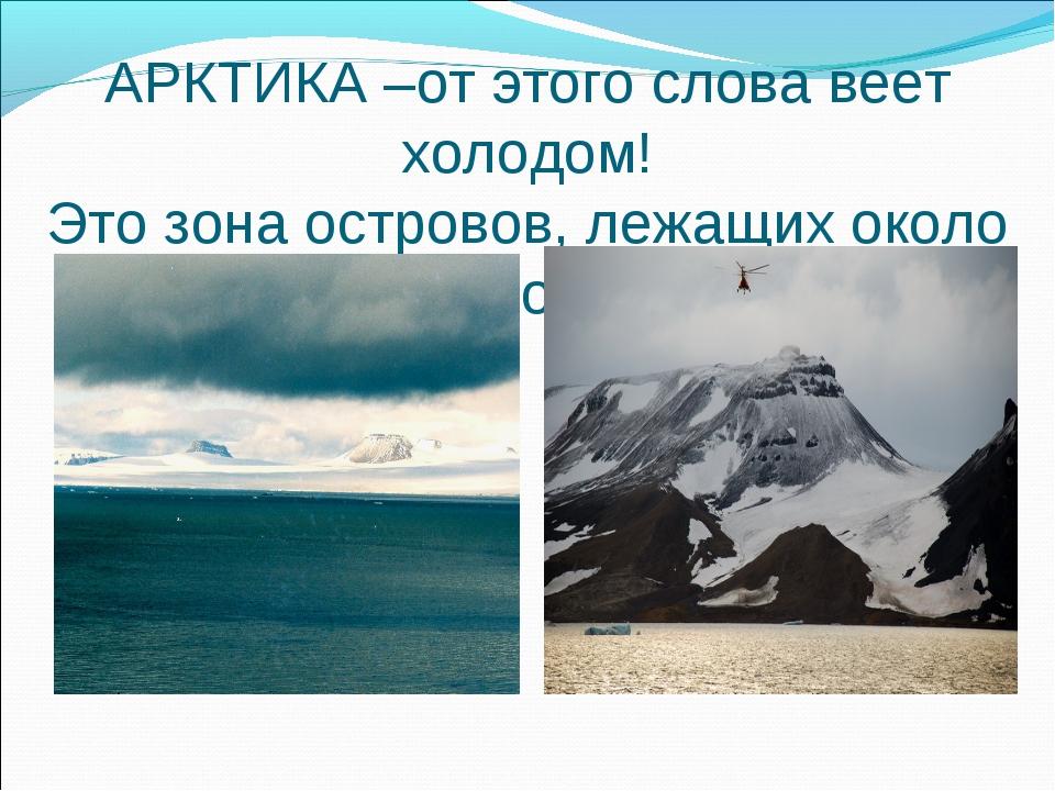 АРКТИКА –от этого слова веет холодом! Это зона островов, лежащих около Северн...