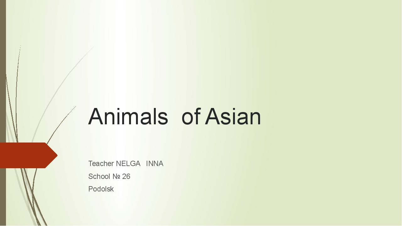 Animals of Asian Teacher NELGA INNA School № 26 Podolsk