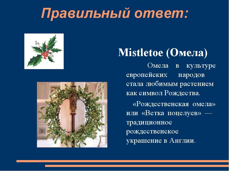 Правильный ответ: Mistletoe (Омела)  Омела в культуре европейских народов ст...