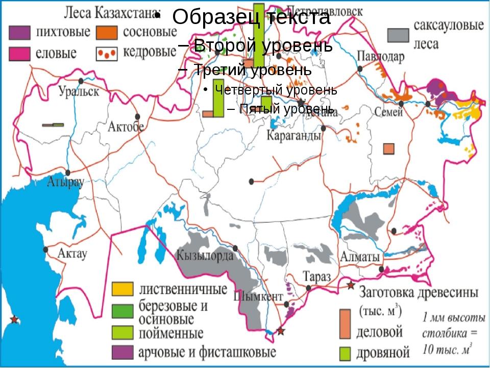 Лесное хозяйство Казахстана Определите: Какие районы Казахстана в большей сте...