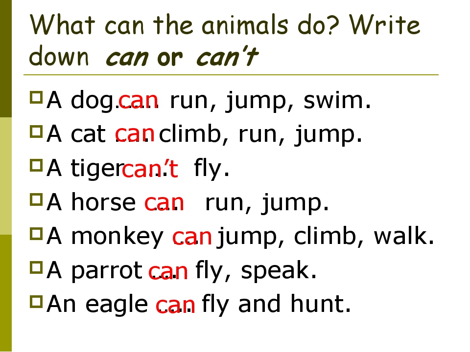 What can the animals do? Write down can or can't A dog……. run, jump, swim. A...
