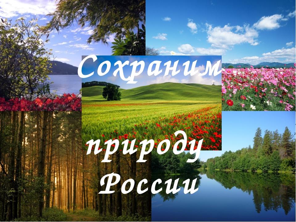 Сохраним природу России