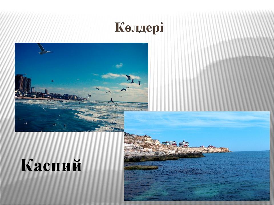 Каспий Көлдері