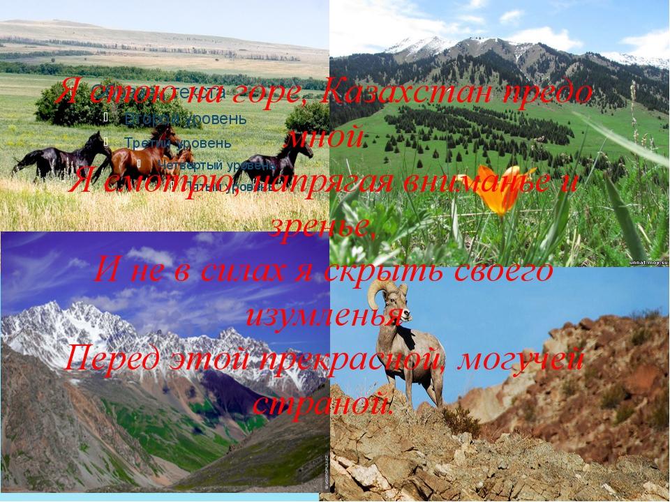 Я стою на горе, Казахстан предо мной Я смотрю, напрягая вниманье и зренье, И...