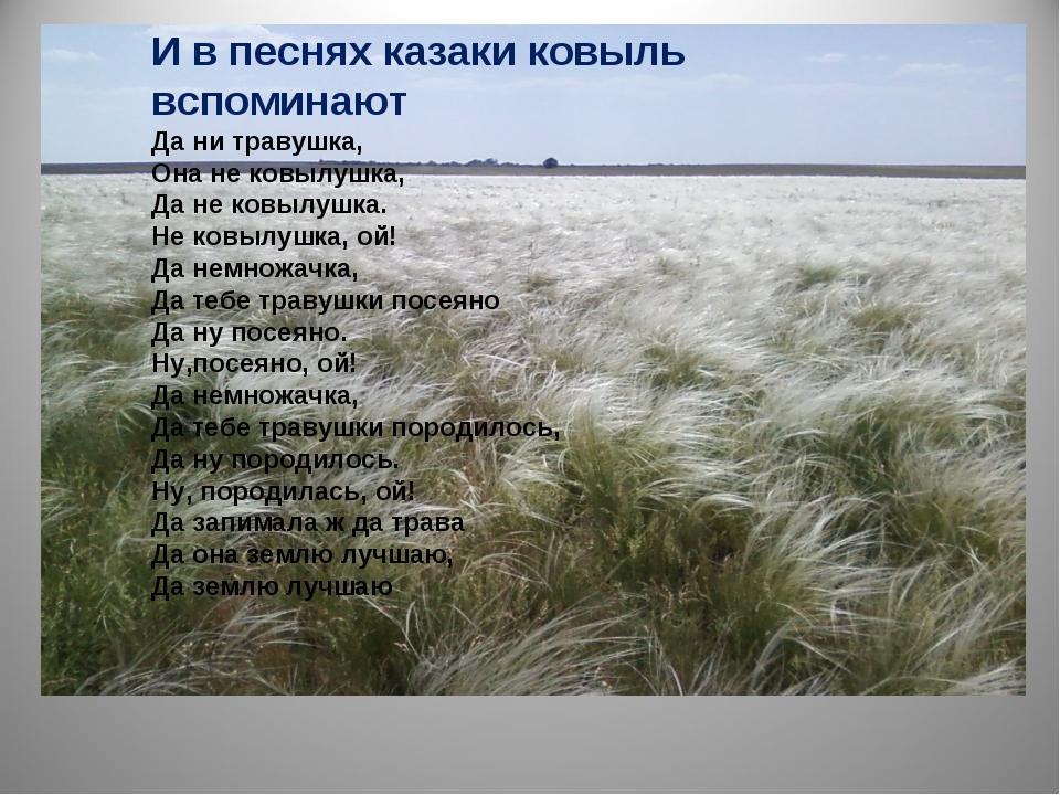 И в песнях казаки ковыль вспоминают Да ни травушка, Она не ковылушка, Да не к...