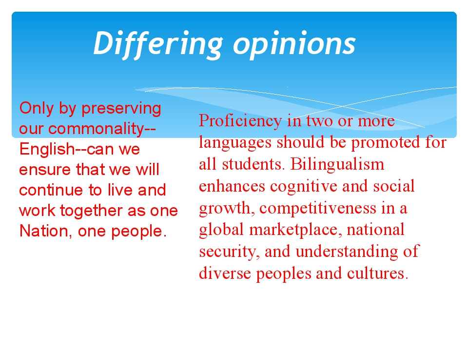 Differing opinions Only by preserving our commonality--English--can we ensure