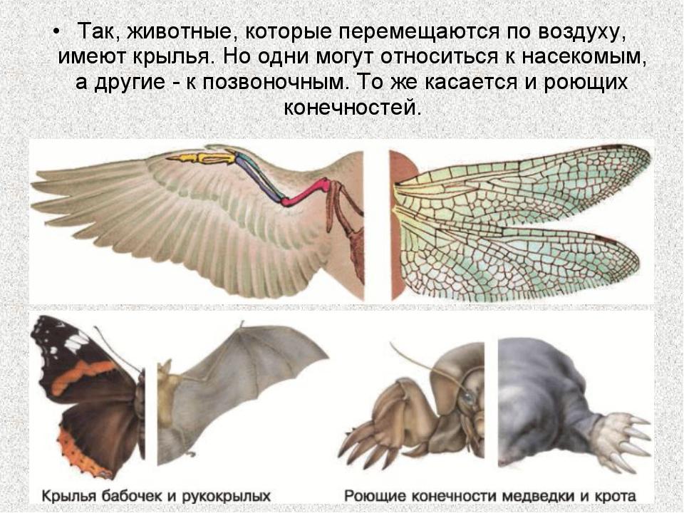 Так, животные, которые перемещаются по воздуху, имеют крылья. Но одни могут о...