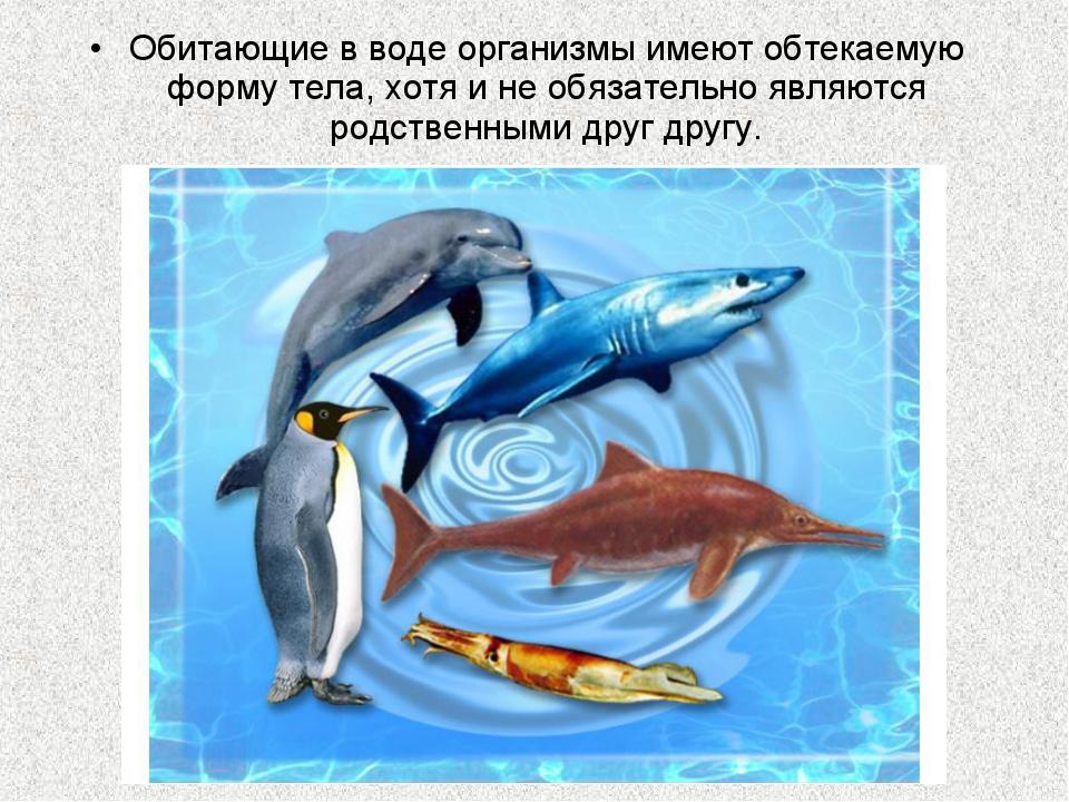 Обитающие в воде организмы имеют обтекаемую форму тела, хотя и не обязательно...