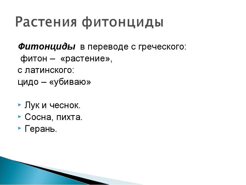 Фитонциды в переводе с греческого: фитон – «растение», с латинского: цидо – «...